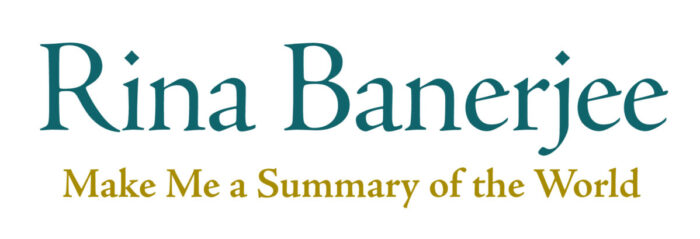 Rina Banerjee title graphic